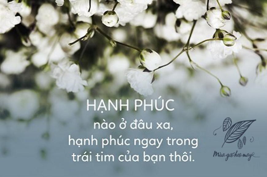 Nếu được chọn một loại hạnh phúc, tôi sẽ chọn hạnh phúc mang tên bình yên   Mùa Gió Heo May